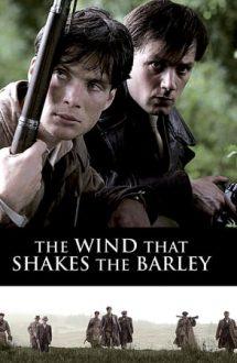The Wind that Shakes the Barley – Mângâierea vântului (2006)