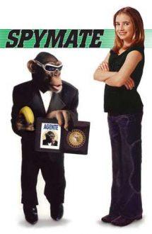 Spymate – Un spion și jumătat (2003)