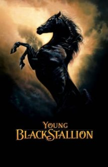 The Young Black Stallion – Legenda armăsarului negru (2003)