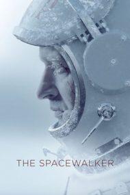 Spacewalk (2017)