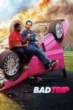 Bad Trip – Călătorie cu surprize (2020)