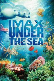 Under the Sea – În Adâncuri (2009)