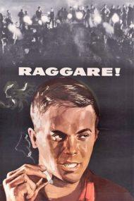 Blackjackets – Jachetele negre (1959)