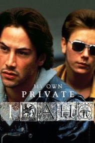 My Own Private Idaho – Dragoste și moarte în Idaho (1991)