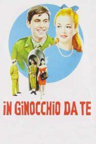 So In Love – În genunchi mă întorc la tine (1964)