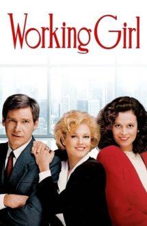 Working Girl – O femeie face carieră (1988)