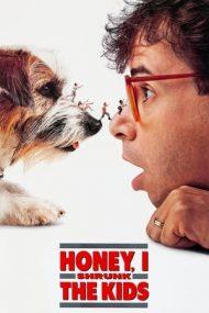 Honey, I Shrunk the Kids – Dragă, am micșorat copiii (1989)
