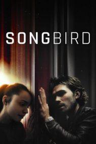 Songbird – Imuni (2020)