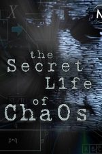 The Secret Life of Chaos (2010)