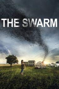 The Swarm – Lăcustele (2020)
