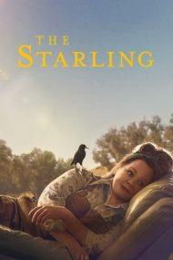 The Starling – Graurul (2021)