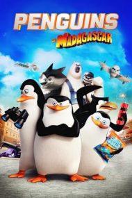 Penguins of Madagascar – Pinguinii din Madagascar (2014)
