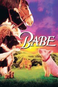 Babe – Cel mai curajos porc din lume (1995)