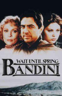 Wait Until Spring, Bandini – În așteptarea primăverii (1989)